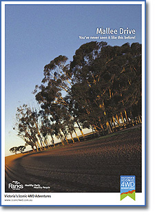 Tracks of the Mallee
